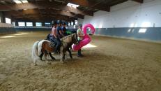 Pony Liga