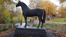 Westfälisches Pferdezentrum Münster