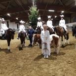 Ponymannschaft